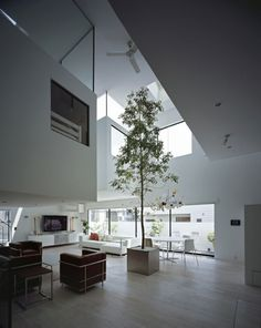 Cool Green Eco Apartments