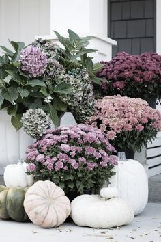 Purple Fall Front Porch - The Lilypad Cottage Purple fall front porch, dark grey sided home featuring mums in shades of purple with hints of faux orange florals and leaves Fall Home Decor, Autumn Home, Rustic Fall Decor, Deco Haloween, Purple Mums, Pink Blue, Decoration Entree, Deco Floral, Porch Decorating