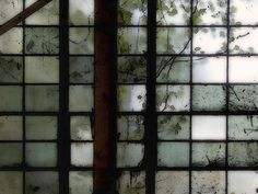 cinoh:  Industrial Window Study 1 by greeblie