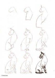 Como dibujar gatos (2)