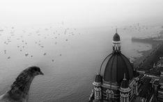 Taj Birds Eye View