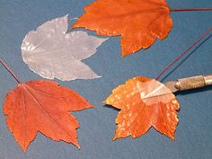 """How to make translucent leaves (using real leaves in the first part of the project) with Mod Podge. Tutorial found at """"Gingerbread and Snowflakes"""" blog."""
