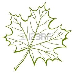 maple leaf: Leaf of a maple, nature symbol, monochrome , isolated pictogram Patterns In Nature, Flower Patterns, Nature Pattern, Maple Leaf Images, Nature Symbols, Printable Leaves, Leaf Outline, Leaf Template, Templates