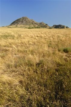 Bear Butte State Park near Sturgis features hiking trails to the top of the mountain and displays about the sacred Native American site. South Dakota, Hiking Trails, Outdoor Activities, Beautiful Landscapes, Great Places, State Parks, Sturgis Sd, Tourism, National Parks