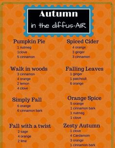 Essential oil diffuser combinations for fall Fall Essential Oils, Essential Oil Diffuser Blends, Essential Oil Uses, Young Living Essential Oils, Doterra Diffuser, Aromatherapy Recipes, Herbal Oil, Diffuser Recipes, Living Oils