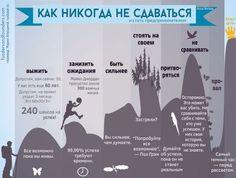 Как никогда не сдаваться - инфографика