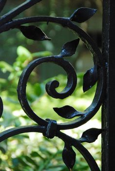 fycharleston:    Ironwork gates at the College of Charleston. Love Charlestons iron gates!#Repin By:Pinterest++ for iPad#