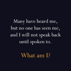 ANSWER: an echo