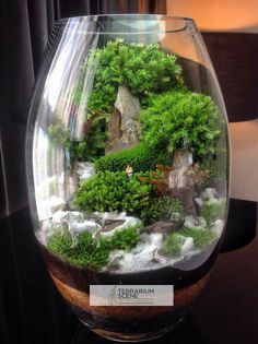 Learn How to Make Easy Home Decor Ideas on a Budget – Terrarium in a Glass Bowl – Home Decor Ideas – Grandcrafter – DIY Christmas Ideas ♥ Homes Decoration Ideas Terrarium Diy, Miniature Terrarium, Terrarium Scene, Terrarium Centerpiece, Terrarium Containers, How To Make Terrariums, Paludarium, Vivarium, Indoor Water Garden