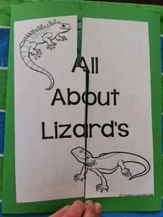 Free All About Lizards Lapbook by Creative Learning Fun Reptiles Preschool, Cute Reptiles, Free Preschool, Preschool Science, Reptiles And Amphibians, Preschool Crafts, Kids Crafts, Mortal Kombat, Rabbit Cages