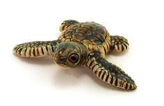 Ceramic Turtle Hatchings- adorable display of turtle hatching out of eggs in a bowl of sand.