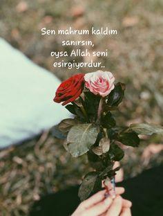 Sen mahrum kaldım sanırsın, oysa Allah seni esirgiyordur.. Queen Love, Allah Islam, Meaningful Quotes, Beautiful Words, Islamic Quotes, Cool Words, Religion, Instagram, Plants