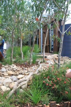 Tips, methods, together with quick guide in pursuance of getting the most ideal end result and making the maximum use of Backyard Landscaping Plans Bush Garden, Dry Garden, Garden Beds, Australian Garden Design, Australian Native Garden, Australian Bush, Rock Garden Design, Small Garden Design, Stone Landscaping