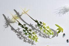 Hummingbirds on Flowers . amazon parrot feathers . 2015 . Chris Maynard . featherfolio