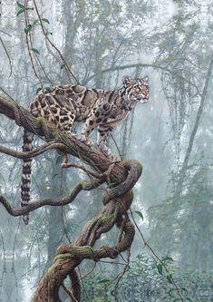 Alan Hunt Artist - Avant Arts lion vs bull elephant crocodile vs elephant lion attacks animal fight back nature wildlife Wildlife Paintings, Wildlife Art, Animal Paintings, Animal Drawings, Horse Drawings, Big Cats Art, Cat Art, Bull Elephant, Clouded Leopard