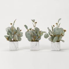 Seeded eucalyptus branches in marbled ceramic cube - set of 3 - D&W Silks Boxwood Plant, Dracaena Plant, Eucalyptus Branches, Seeded Eucalyptus, Ivy Plants, Faux Plants, Silk Tree, Potted Trees, Interior Plants