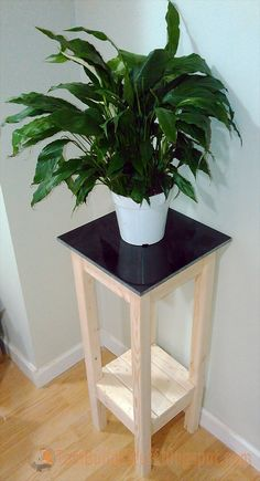 Tile-top plant stand that's easy and affordable to build.