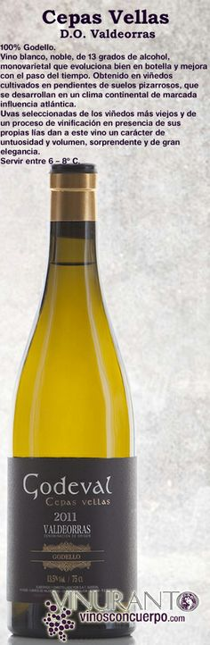 Godello de cepas viejas para un blanco impresionante, pleno de sabor y sabiduría.  Godello Old Vines, and impressive white wine, full of flavour and knowledge.