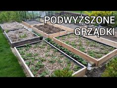 Back to Eden + Square Foot Gardening raised beds construction Raised Beds, Flora, Gardening, Architecture, Plants, Outdoor, Youtube, Design, Magic