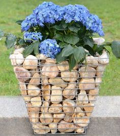 See these gabion ideas that will enhance the garden ambient!If you just scroll down you will find the best design for your own garden place! Plastic Barrel Planter, Plastic Planter Boxes, Plastic Plant Pots, Wooden Planter Boxes, Window Planter Boxes, Ceramic Plant Pots, Wooden Garden Planters, Basket Planters, Wooden Planters