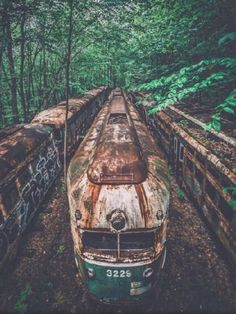 Abandoned into nature. Photo by Daily Vibes. Source Flickr.com