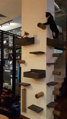 cat, cat lover gift, cat bed, cat furniture, cat g Cat Wall Furniture, Modern Cat Furniture, Furniture Ideas, Barbie Furniture, Garden Furniture, Furniture Design, Painting Furniture, Furniture Stores, Cat Wall Shelves