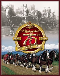 Budweiser - Clydesdales 75th Anniversary