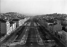Avenida da Liberdade, Lisbon, Portugal 1930,   Photography by Ferreira da Cunha, Photographic Archive of the C.M.L.