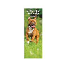 Staffordshire Bull Terrier 2017 12 Month Slim Calendar