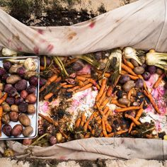 Francis Mallmann's Wood-Fired Vegetables Take Four Hours—and They're Worth It Rehearsal Dinner Entertainment, Rehearsal Dinner Food, Rehearsal Dinners, Gwyneth Paltrow, Francis Mallman, Catering, Open Fire Cooking, Cooking Onions, Wedding Dinner