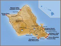 Oahu Wildlife Viewing Sites by hawaiiwildlife.us #Oahu #Wildlife