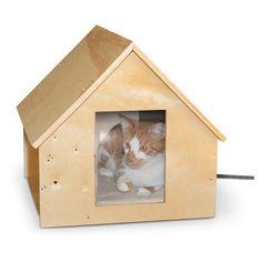 "For the ""neighborhood cat"""