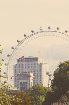 London Eye, courtesy of Nina Nixon