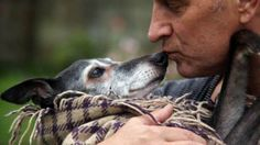 On Saturday morning, hundreds of dog lovers joined a dog owner as he carried Walnut the whippet, his 18-year-old dog, on his final walk on a beach in Cornwall. Mark Woods encouraged people, through his social media posts #walkwithwalnut to accompany the pair on their last outing together before Walnut the whippet was gently euthanized …