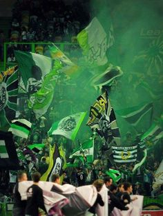 Football Casual Clothing, Football Casuals, Green Force, Soccer Poster, Best Club, Sports Clubs, Scp, Football Fans, Surabaya