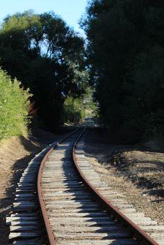 L1M1AP3 - Lines: Abandoned rail Line, New Norfolk, Tasmania. Shot standing, F/7.1, Exp 1/125, ISO 100(Auto), Focal Length 55mm, Handheld.