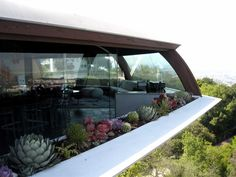 Chemosphere by John Lautner #succulents #plants #exterior