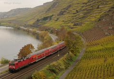 Central Rhine Railway between Bingen and Koblenz (Germany).  'The Rhine Valley offers romantic German landscapes straight from a fairytale – castles rising above swirling waters, past the narrows where the siren Loreley sings sailors onto the rocks. Take the Mittelrheinbahn (MRB; Central Rhine Railway service), which follows the left bank between Mainz and Koblenz, stopping at all stations.' http://www.lonelyplanet.com/germany/rhineland-palatinate/rhine-valley