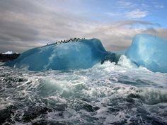 Iceberg blu  Fotografia di Maria Stenzel