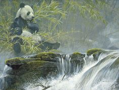 Robert Bateman Giant Panda Bear