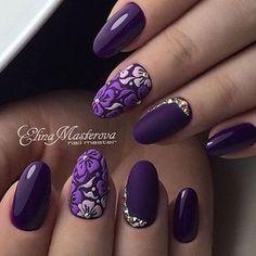 Purple Hibiscus  Flowers