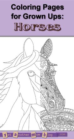 Adult Coloring Page Zentangle Horse And Bonus Plain One If Youd