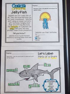 Ocean themed activities and printables: *reading comprehension (jellyfish and other ocean creatures) *let's label the parts of a shark!