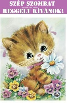 Good Morning, Teddy Bear, Animals, Humor, Happy, Good Night Messages, Images For Good Night, Bom Dia, Animales