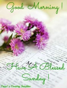have a blessed sunday quotes   Have a blessed Sunday! via Carol's Country ...   ENDOBLOG.hu-Az ENDOM ...