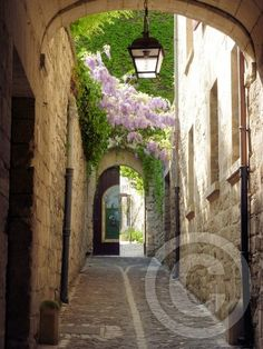 St Remy Provence France by Susan Moss on ARTwanted