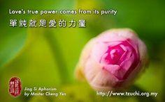 Jing Si Aphorisms by Master Cheng Yen             (靜思語-證嚴法師)