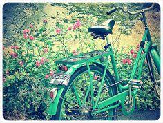 green vintage bicycle...