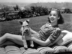 Ida Lupino was an English-American actress and singer, who became a pioneering director and producer—the only woman working within the Hollywood studio system to do so. Classic Movie Stars, Classic Films, Schnauzers, Girls Best Friend, Best Friends, Celebrity Dogs, Mini Schnauzer, Miniature Schnauzer, Victoria
