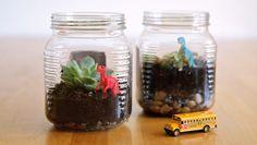 Com um miniterrário com potinho de vidro os seus ambientes vão ficar mais fofos